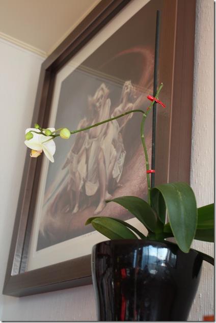 Blomster-okt09 001